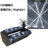 عنكبوت [لد] متحرّك رئيسيّة حزمة موجية ضوء