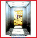 Подъем дома лифта Villla высокого качества