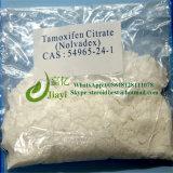 Citrato sin procesar de Nolvadex Tamoxifen del polvo del Anti-Estrógeno para la hembra