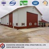 Gruppo di lavoro prefabbricato dell'azienda agricola della struttura d'acciaio con esperienza ricca