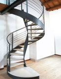 Escada de aço da escadaria espiral moderna com a escadaria dos trilhos do aço inoxidável