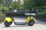 2 Elektrische Autoped van Woqu Seev van de Autoped Citycoco van de Mobiliteit van het wiel de Zelf In evenwicht brengende Elektrische Elektrische