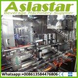 Automatische 300bph 5L Flaschen-flüssiges Füllmaschine-Verpackungsfließband