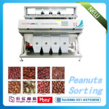 Grain Color Sorter for Pumpkin Seeds, Raisin, Nuts, Haricots