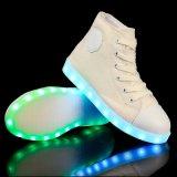 LED 빛난 즈크화 2016의 새 모델 LED 가벼운 여가 단화