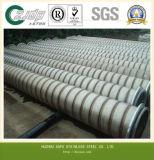 0Cr18Ni9 Fabrikant van China van de Pijp van het roestvrij staal de Naadloze