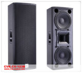 2014 Cvr Dual 12 Inch Banda DJ Speaker (CV-123B)