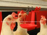닭을%s 조립식 집 건축을%s 가진 가금 집에 있는 최신 판매 자동적인 장비