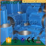 Un motore elettrico di 3 fasi di CA di LANDTOP