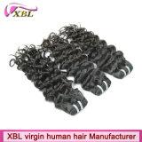 Cabelo ultramarino livre do produto químico natural do cabelo humano do Virgin