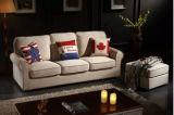 Sofá de la sala de estar con el sofá de la tela para los muebles modernos