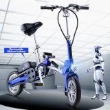 Neuestes faltbares elektrisches Fahrrad 12inch Emotor Fahrzeug