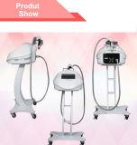 O melhor equipamento fracionário da beleza do cuidado de pele do sistema do RF para a venda com preço à saída da fábrica (MR20-1SP)