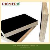 La película de Brown de la base del álamo hizo frente a la madera contrachapada para la construcción