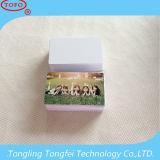 Unbelegte Inkjet PVC-Identifikation Card für Epson und Canon Printer (Doube seitliches Drucken)