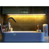 LEDのために取付けられる表面とのアルミニウム管のプロフィールは放出を除去する