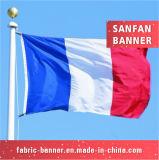 Дешевая рука развевая выдвиженческий национальный флаг