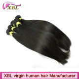 Mongolian Human Hair Sew di Weft della macchina in Hair Extensions