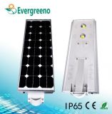 réverbère solaire de 30W 40W 60W avec IP65