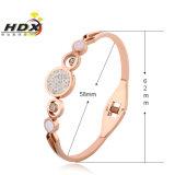 De Armband van het Roestvrij staal van de Armband van de Bergkristallen van de Juwelen van de manier (hdx1034)