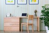 حديثة خشبيّة [سترتشبل] حاسوب مكتب مع [شست وف درور] ([ن703-ست])