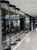 Deur van de Ingang van het Glas van ANS de bi-Vouwende (bha-DBF14)
