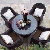 Meubles extérieurs de loisirs de balcon de jardin de café de barre de rotin