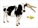 Free SampleのLivestock ManagementのためのLf HfかUHF RFID Animal Ear TagかCattle Ear Tag