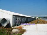 Edifício da construção de aço com maquinaria automática de Qingdao Hapy