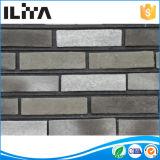 Pedra artificial do tijolo do revestimento para a decoração do edifício (YLD-20034)