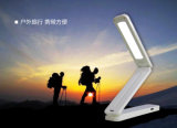 Clock Alarm Clock Date Temperature Indicator Function를 가진 태양 Folding Desk Lamp