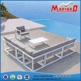 屋外の藤/庭の家具/庭のソファーの家具