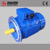 MS Motor électrique