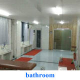 浴室のマットの反スリップのマット