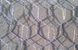 Строительные материалы гальванизировали шестиугольную ячеистую сеть (Anjia-107)
