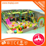 다채로운 아이 운동장 위락 공원 모형이 실내 체조 장비에 의하여 농담을 한다