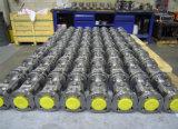 De Cryogene Drijvende Kogelklep van de flens