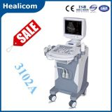 Scanner Pieno-Digitale di ultrasuono del carrello Hbw-10
