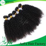 卸し売り熱い様式のカーリーヘアーの織り方のブラジルのバージンの人間の毛髪