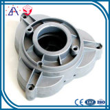 High Precision OEM Custom Aluminum Casted and Machined Parts (SYD0112)