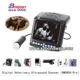 O Farrier utiliza ferramentas o varredor do ultra-som do teste de gravidez dos animais de estimação