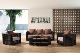O sofá ao ar livre de venda quente da mobília do Rattan sintético do projeto novo ajustou-se usando-se para a barra de café /Garden & o hotel por Sinle/Double/3-Seat (YT602)