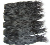 人間のHairかHair Extensions/Malayian Virgin Hair