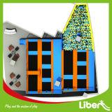 Liben 고품질 건물에 의하여 주문을 받아서 만들어지는 아이들 실내 오락 Trampoline