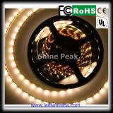 Una striscia dei 3528 LED