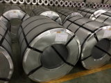 Alu-Zinc Coating Steel Coil mit Afp