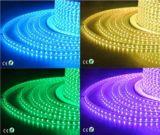tira LED 3528 del brillo de 100m/Reel 220V con el Ce RoHS