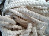 Les cordes en nylon de multifilament tressées les meilleur marché de Slaes