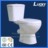 Die heißer ökonomische Verkaufs-hohe Leistungsfähigkeit verdoppeln bündige P-Traptwo-Stück Toiletten-Arbeitskarte