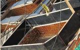 Madeira compensada preta da película de Formply 17 para a construção